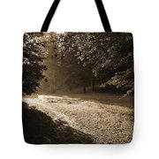 Step Out Of The Shadow Tote Bag
