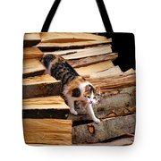 Stepping Down - Calico Cat On Beech Woodpile Tote Bag