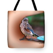 Stepping Out Into The Spotlight Tote Bag by Sue Melvin