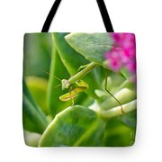 Stepping Out Tote Bag