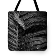 Stepping Out Of Line Tote Bag