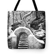 Steps Along The Wissahickon Tote Bag