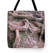 Steps With Roots Tote Bag