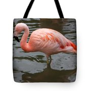 Stern Flamingo Tote Bag