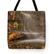 Stewart Falls II Tote Bag