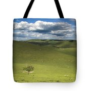 Steyning Bowl Tote Bag