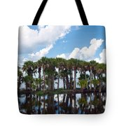Stick Marsh In Fellsmere Florida Tote Bag