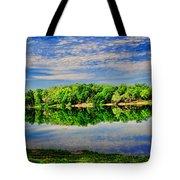 Still Lake Tote Bag