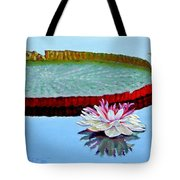 Stillness Tote Bag