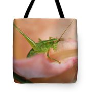 Stillness Of The Moment Tote Bag