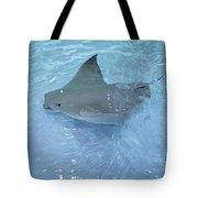 Sting Ray Tote Bag