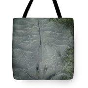 Stingray Camo Tote Bag