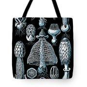 Stinkhorn Mushrooms Vintage Illustration Tote Bag