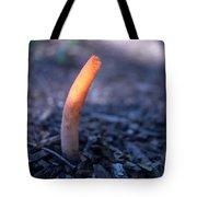 Stinkhorn Rising Tote Bag
