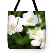 Stirrings Tote Bag