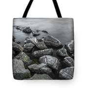 Stone Cold Tote Bag by Julis Simo