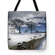 Stone Fence, Weardale, County Durham Tote Bag