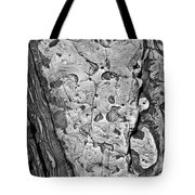 Stone Patterns Rock Map Tote Bag by Garry Gay