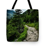 Stone Walkway Into The Valley Tote Bag