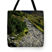 Stone Walkway Towards The Pointed Peak Tote Bag