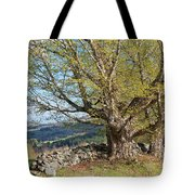 Stone Wall Spring Landscape Tote Bag