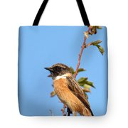 Stonechat On Branch Tote Bag