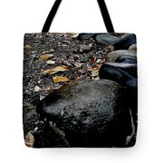 Stoned Trail Tote Bag