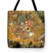 Stonefish Tote Bag