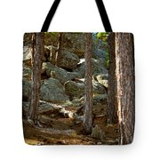 Stones And Trees Tote Bag