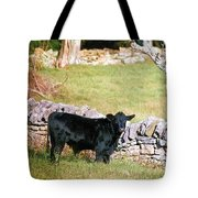 Stonewalled Tote Bag