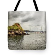 Stony Cove, Ireland Tote Bag