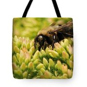 Stop For A Snack Tote Bag