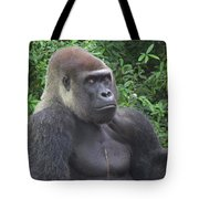 Stop Looking At Me Tote Bag