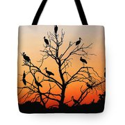 Storks In The Evening Sun Light Tote Bag