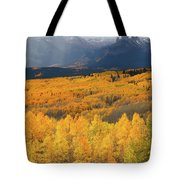 Storm At Ohio Pass During Autumn Tote Bag