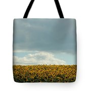 Storm Cloud Above Our Heads Tote Bag