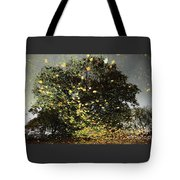 Storm Force Tote Bag