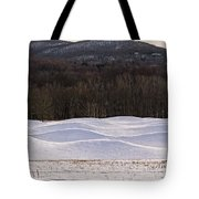 Storm King Wavefield In Snowy Dress Tote Bag