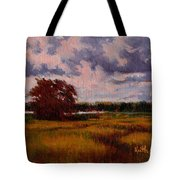 Storm Over Marshes Tote Bag