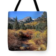 Storm Pass Trail Tote Bag