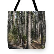 Storm Point Trail Forest Tote Bag
