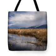 Storm Reflections Tote Bag