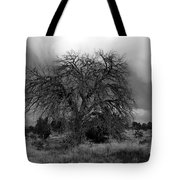 Storm Tree Tote Bag
