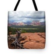 Storm View Tote Bag