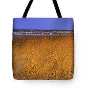 Stormy Walk On The Beach Ix Long Beach Washington Tote Bag