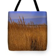 Stormy Walk On The Beach Viii Long Beach Washington Tote Bag