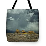 Stormy Wet Tote Bag