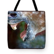Straight From The Horse's Mouth Tote Bag