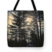 Straining To Win The Sky Tote Bag