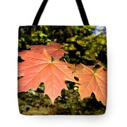 Strange Phenomenon Tote Bag